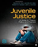 img - for Juvenile Justice: A Guide to Theory, Policy, and Practice book / textbook / text book