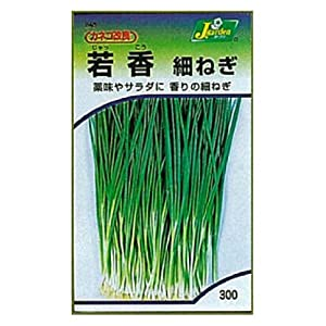 Kaneko Seeds Co., Ltd. gardening , seed KS300 series Wakako fine leek vegetables 300 245