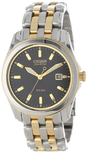 Citizen Men's BM6734-55E Eco-Drive Two-Tone Stainless Steel Black Dial Watch