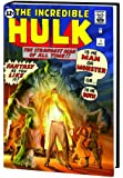 The Incredible Hulk Omnibus, Vol. 1 (Alex Ross Variant Cover) (v. 1)