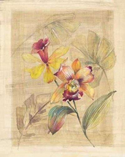 paul-hargittai-bahama-breeze-ii-kunstdruck-4572-x-6096-cm
