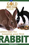 Golden Tips for Keeping Your First Rabbit (Gold Medal Guide)