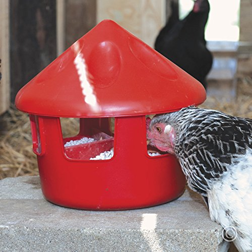Premier Poultry Grit & Oyster Shell Feeder - 6 Lb. (Chicken Range Feeder compare prices)