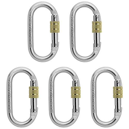 5-x-Mousqueton-Oval-Steel-Carabiner-Lion-dAlpidex