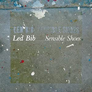"Cover of ""Sensible Shoes"""