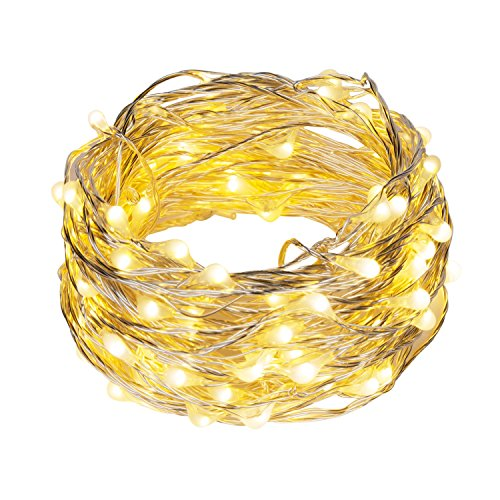 Ehome 100 LED 33ft/10m Starry Fairy String Light, Waterproof Decorative Copper Wire Lights for Indoor Outdoor, Bedroom Festival Christmas Wedding Party Patio Window with USB Interface (Warm white)