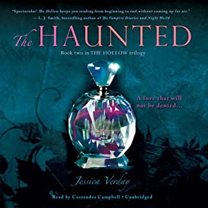 The Haunted Audiobook