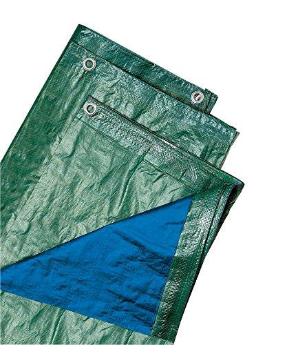 Biacchi Ettore 54072 Telo Blu, 4X 5 Occhiellato, 100 g, Verde