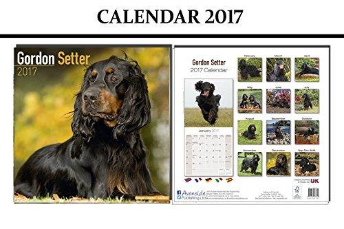 gordon-setter-dogs-calendar-2017