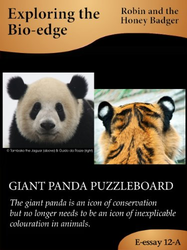 Robin and the Honey Badger - GIANT PANDA PUZZLEBOARD