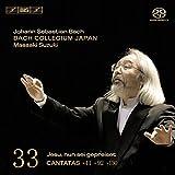 Bach: Cantatas, Vol. 33