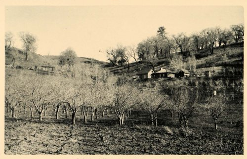 1887 James Madison Orchard Home Julian San Diego County - ORIGINAL PHOTOGRAVURE - Original Photogravure