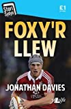 img - for Foxy'r Llew (Cyfres Stori Sydyn) (Welsh Edition) book / textbook / text book