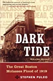 img - for Dark Tide: The Great Molasses Flood of 1919 book / textbook / text book