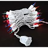 Novelty Lights Inc Commercial Grade Christmas Mini Light Set White Wire 25 Spacing 50 Light 11 Long