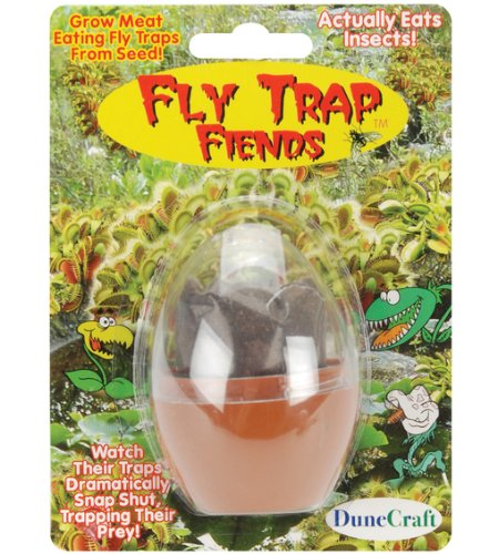 Fly Trap Fiends Micro-Terrarium