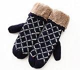 装着 しやすい 防寒 レディース ミトン 型 手袋 (ネイビー)