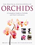 img - for The Practical Encyclopedia of Orchids by Brian Rittershausen (2000-09-30) book / textbook / text book