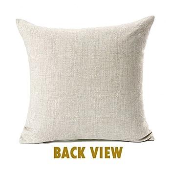 Bird Flower Paris Eiffel Tower Vintage Home Decor Throw Pillow Case Cushion Cover 18 x 18 Inch Cotton Linen(#4)