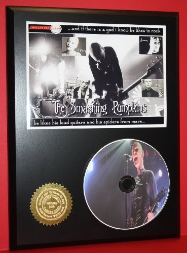 Smashing Pumpkins Ltd Edition Picture Disc Cd Rare Collectible Music Display