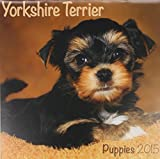 Wirestitched Yorkshire Terrier (Mini) 2015