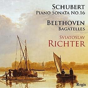 Sviatoslav Richter plays Schubert and Beethoven