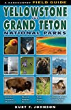img - for A Field Guide to Yellowstone and Grand Teton National Parks book / textbook / text book