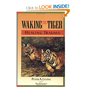Waking the Tiger Book Review