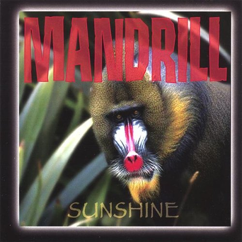 Sunshine CD by Mandrill