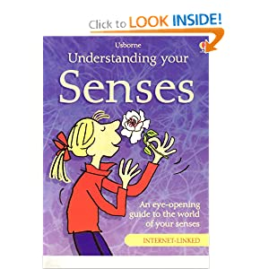 Understanding Your Senses (Usborne Science for Beginners) Rebecca Treays and Christyan Fox