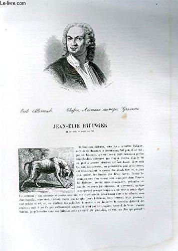 Biographie de Jean-Elie Ridinger (1695-1767) ; Ecole Allemande ; Chafses, Animaux sauvages, Gravures ; Extrait du Tome 8 de l'Histoire des peintres de toutes les écoles.