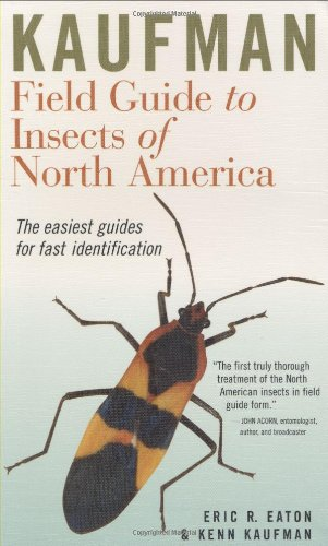 Kaufman Field Guide to Insects of North America (Kaufman...