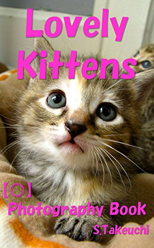 Free Kindle Book : Lovely Kittens: Photography Book