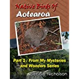 Native Birds of Aotearoa Part 1 : From My Mysteries and Wonders Series