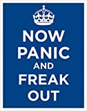 Now Panic and Freak Out Novelty Stress Humor Quote Poster Print 11x14