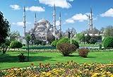 1000ピース ブルー・モスクと大庭園 71-342