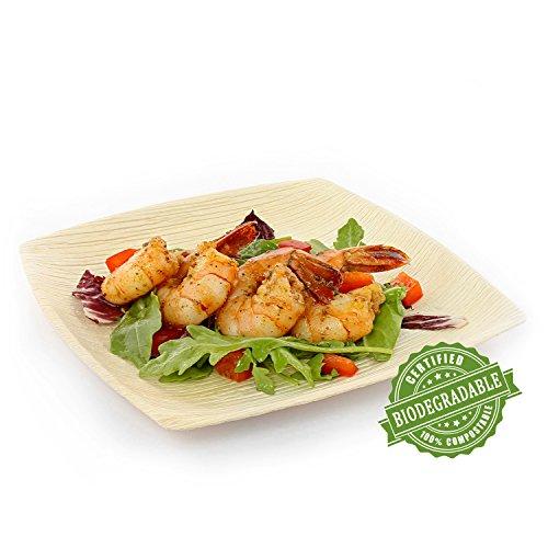 cibowares-premium-20-cm-square-natural-areca-palm-leaf-plate-eco-friendly-and-disposable-for-home-an