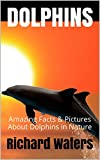 img - for DOLPHINS: Amazing Facts & Pictures About Dolphins in Nature (Children's Books About Sea Life Book 1) book / textbook / text book