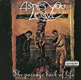 Passage Back of Life by Ashes You Leave