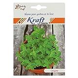 Oregano Herb Seeds (Pack of 5) by Kraft Seeds