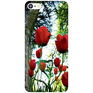 Apple iPhone 5C Back Cover - Roses Designer Cases