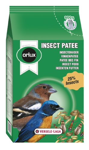 Cheap Orlux Versele-Laga Orlux Insect Patee Aviary Bird Complete Food 800G 800G (B000LXXW7Y)
