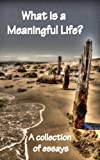 img - for What is a Meaningful Life? A Collection of Essays (Meanings Book 1) book / textbook / text book