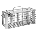 Defenders Rat and Squirrel Cage Trap - Best Reviews Guide