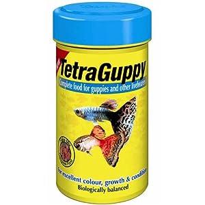 Tetra guppy food 30g pet supplies for Guppy fish food