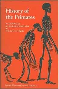 Primate Sociality, Social Behavior, and Culture