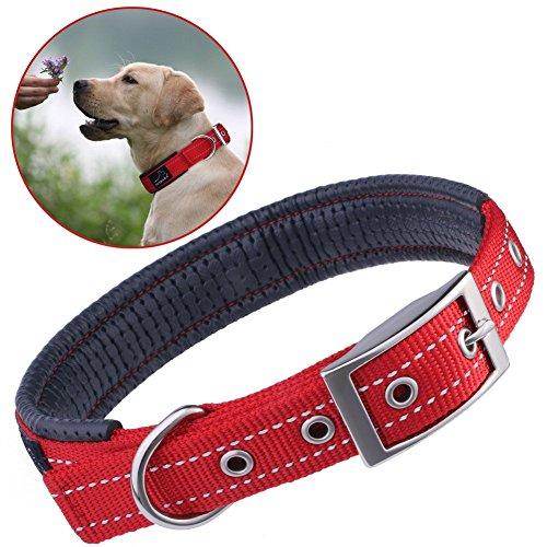 hundehalsbander-reflektierend-petbabab-gepolstert-verstellbar-nylon-training-hunde-halsband-fur-hund