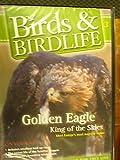 Birds & Birdlife, Volume 3 - Golden Eagle King of the Skies