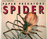img - for Paper predators: Spider and Fly: Gigantic Cut-out Models of Spider and Bluebottle book / textbook / text book