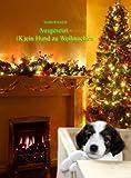 (K)ein Hund zu Weihnachten
